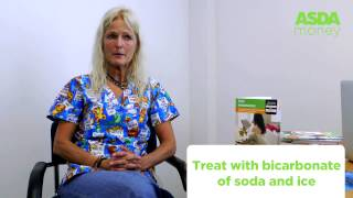 How to treat cat & dog insect stings or bites | Asda Pet Insurance