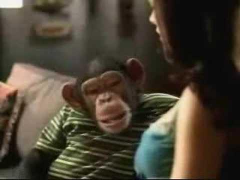 Dirrty Monkey