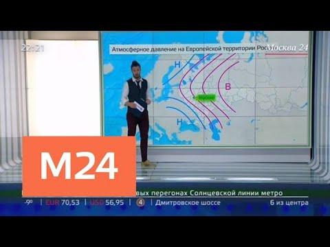 Февраль может преподнести москвичам погодные аномалии - Москва 24