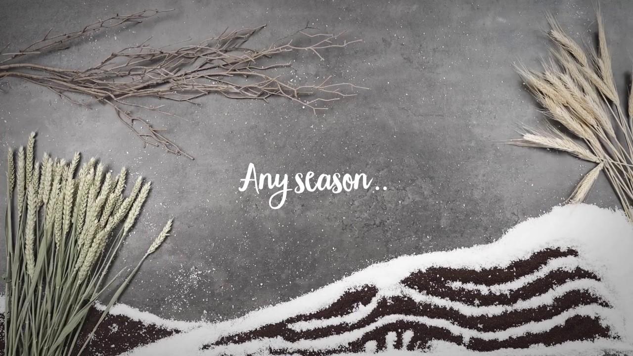 Any Season Any Time