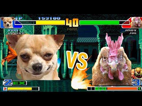 El Poderoso perro Chihuahua vs Perros y un Pollo