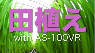 田植え!with SONY AS-100VR  Rice Planting annual movie