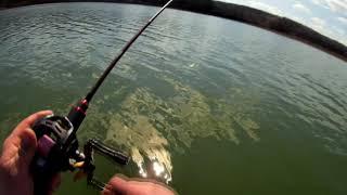 Рыбалка в с.Остаповка 2021. Крупный окунь и щучки на мдж приманки. Ловля кастинговой УЛ снастью.
