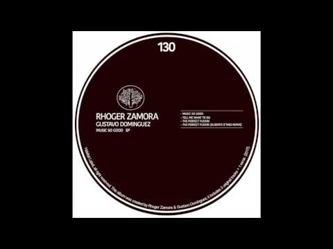 Rhoger Zamora & Gustavo Dominguez - The Perfect Fusion (Alberto D'meo Remix)