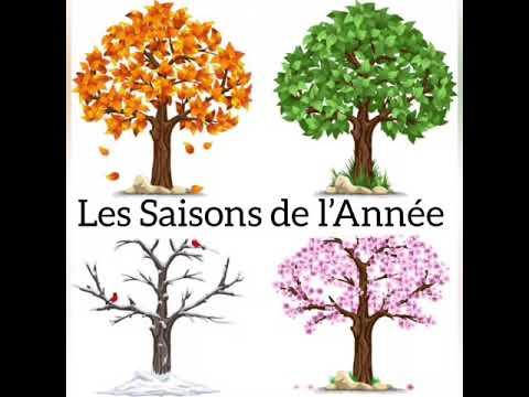 Download LES SAISONS DE L' ANNÉE 🍁❄️🌺☀️