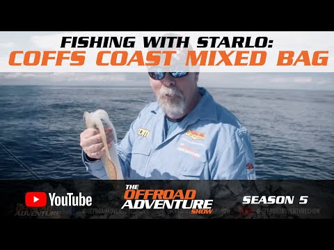 Fishing With Starlo: Chasing Fish Off The Coffs Coast