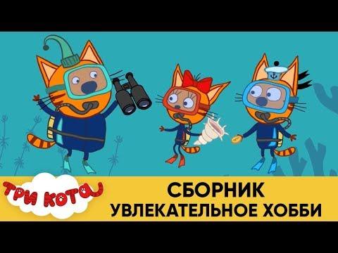 Три Кота | Сборник Увлекательное хобби | Мультфильмы для детей 🎮🎿🎲