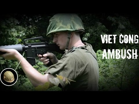 short history of vietnam war and viet cong A short history of the department us involvement in the vietnam war: the holiday, north vietnamese and communist viet cong forces launched a coordinated.