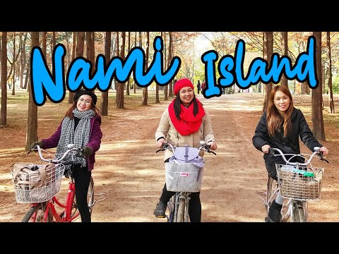 How to Go to Nami Island | Biking 🚲 | Korea Fall 🍁 Day 5 Part 1 VLOG