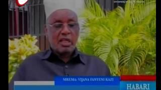 Mrema Awashauri Vijana