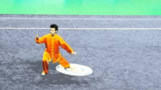 関屋賢大 第17回アジア競技大会 太極拳 9.54
