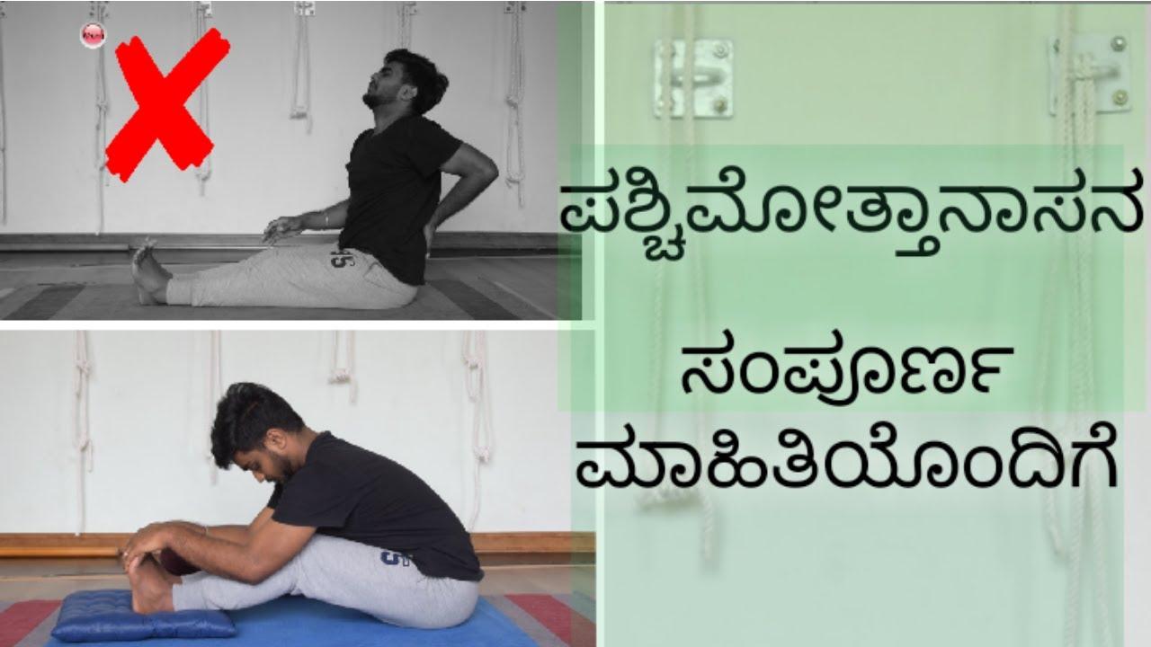 Dandasana In Kannada