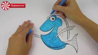 РАСКРАСКА - В ПОИСКАХ ДОРИ - рыбка Дори - FINDING DORY - FINDING DORY COLORING BOOK