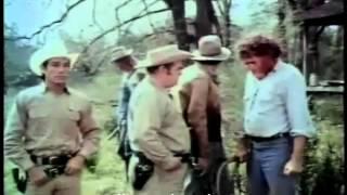 Video Gator Bait - 1974 download MP3, 3GP, MP4, WEBM, AVI, FLV September 2017