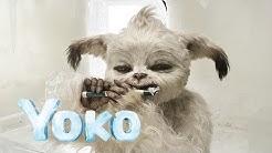 YOKO [HD+] Official Trailer Deutsch Kino Trailer. Mein ganz besonderer Freund. Deutsch (German) Sony