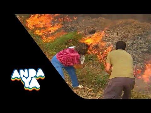 Skone homenajea a Galicia y a Asturias por su trabajo contra el fuego