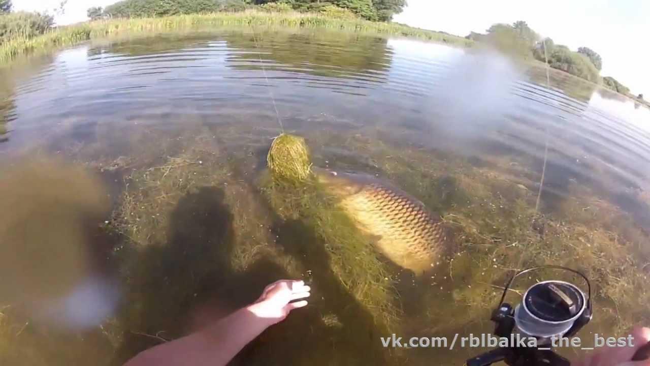 Вот это карп !!! Хочу туда на рыбалку !!!