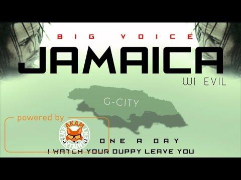 Big Voice - Evil (Raw) [War Gods Riddim] December 2016