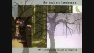 Watch Saddest Landscape The Stars In January video