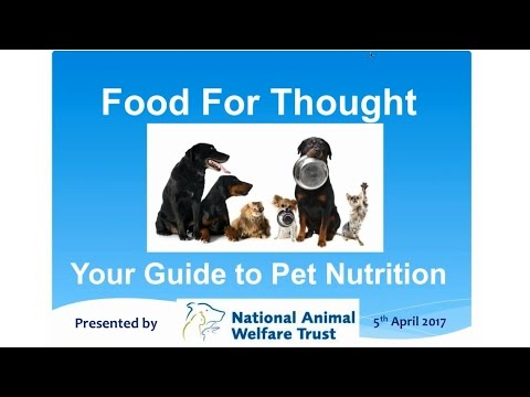 Food for Thought- Pet Nutrition Webinar