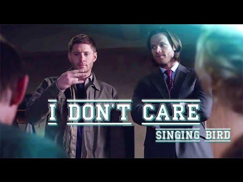 I Don't Care (Jensen, Jared)