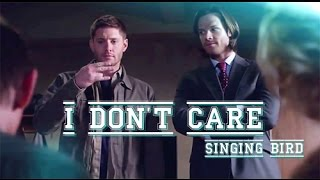 I Don't Care (Jensen, Jared)