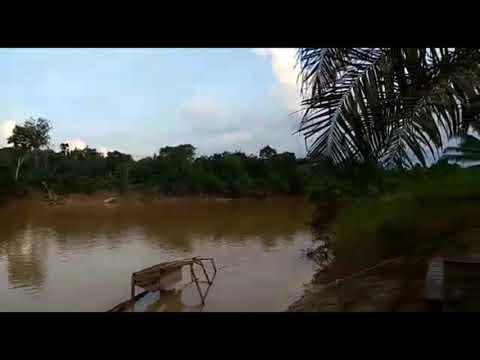 Cover Lagu Daerah Kalimantan Barat