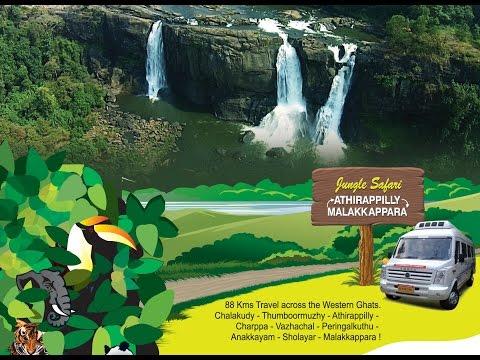 Jungle Safari- Athirappilly Malakkappara JUNGLE SAFARI.  HD