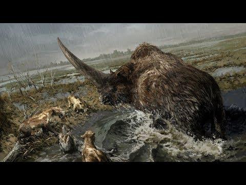10 мифических животных, которые реально существовали