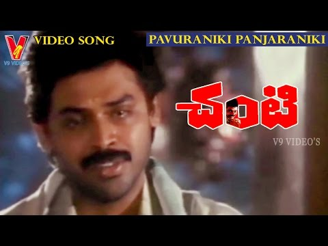 PAVURANIKI PANJARANIKI VIDEO SONG | CHANTI | VENKATESH | MEENA | V9 VIDEOS