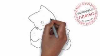 Нарисованные кошки и коты  Как нарисовать красивых котят поэтапно простым карандашом за 35 секунд