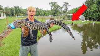 I CAUGHT THE ALLIGATOR in My BACKYARD!!