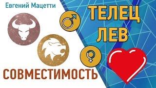 видео Совместимость Льва и Тельца по гороскопу