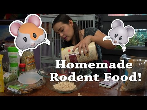 DIY Rodent Mix | Homemade Food