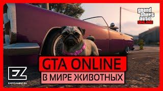 В мире животных в GTA Online!