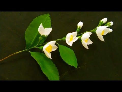How To Make Jasmine Flowers From Crepe Paper | DIY Easy Craft Ideas | Origami!