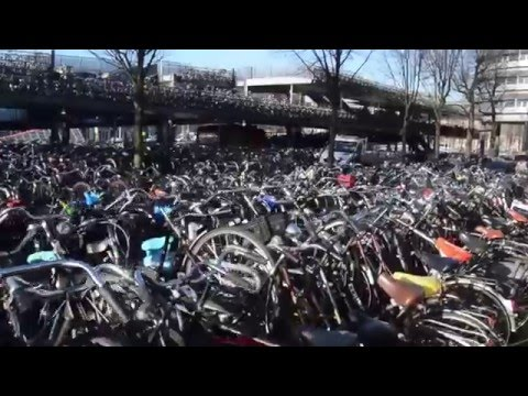 Outdoors bicycle parking Amsterdam Central Station | Travel