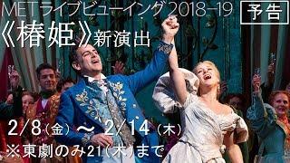 泣ける!人生で一度は観るべき傑作オペラ《椿姫》