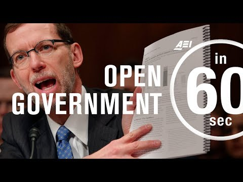 Open government: Why transparency matters for public policy analysis | IN 60 SECONDS