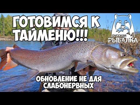 Готовимся к рыбалке на тайменя! Первый взгляд на обновление  Русская Рыбалка 4Russian Fishing 4