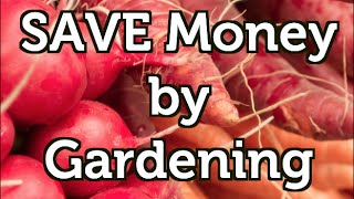 12 Easy Tips To Save Money While Gardening