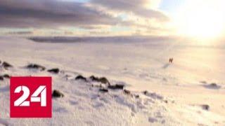 На Арктическом форуме обсудят экономические и социальные проекты - Россия 24