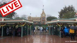 Rainy Day Disneyland Rides