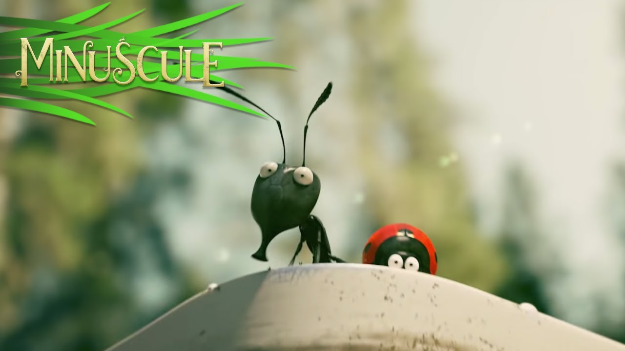 Download Minuscule Valley of the Lost Ants - Official Trailer