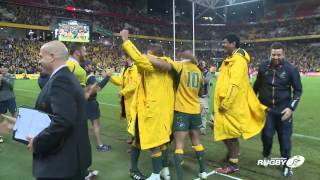 Wallabies The Moment...
