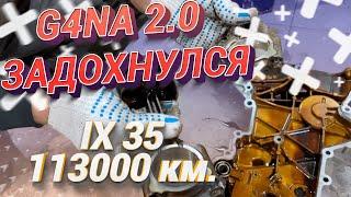 Двигатель G4NA 2.0 массовые проблемы