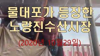 물대포가 등장한 노량진수산시장 투쟁현장(10월29일)