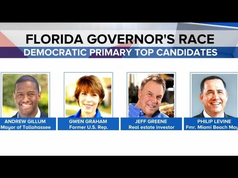 Florida primary elections take on gun control debate