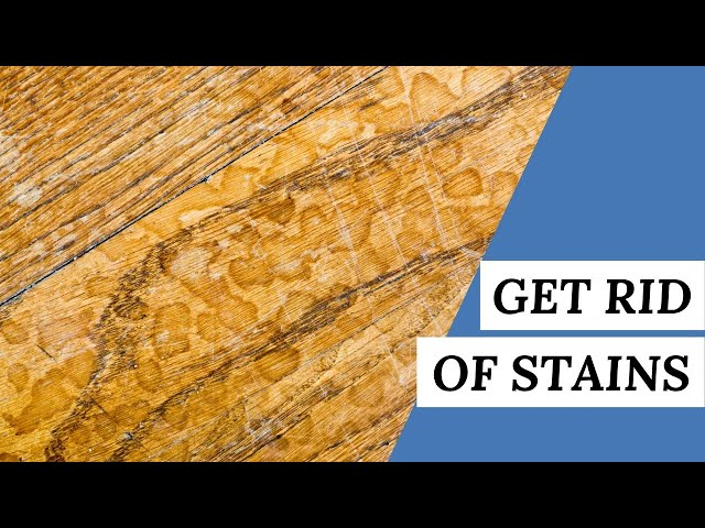 3 DIY Tips To GET STAINS Out Of Hardwood Flooring | Cleaning Tips #short