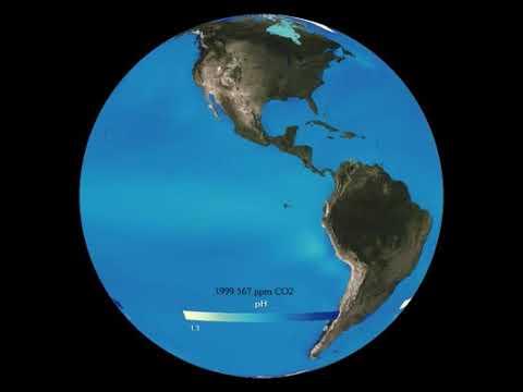 Ocean pH by NOAA